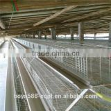 Factory sales chicken brooder cage/poultry chicken coop equipment for chicks/laying hens