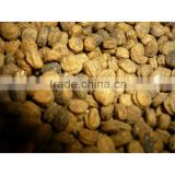 Jilin Changbai Mountain Panax Ginseng Seeds For Cultivation