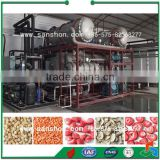 Fruit and Vegetable Vacuum Freeze Dryer Industrial Freeze Dryer