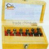 Tungsten carbide router bit sets-6pcs set-B (0822)