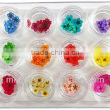 mini bead for real flower <b>nail</b> <b>art</b> 2013