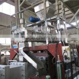 Onion Ring Bugles 2D/3D Fried Snack Pellet Processing Line