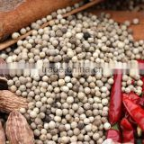 hainan white pepper for sale