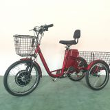 350W 48V Electric Trike with front rear basket,EWheels Adult Electric Tricycle