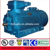 High voltage 6kV 10kV flameproof TEFC electric motor with IEC Ex certificate
