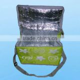 Non Woven Insulated Bag