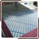Hot selling film faced plywood for Philippines market