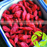 Premium Chinese ningxia goji berry natural Qinghai herbs gou qi zi sleep herbs tea dried wolfberry herbal tea