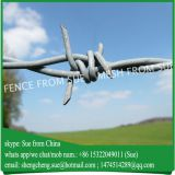 Barbed wire types twisted double strand barbed wire