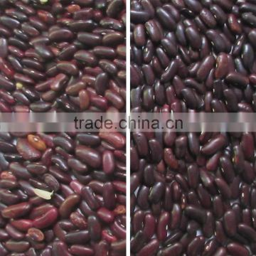 Red Bean CCD Color Sorting Machine