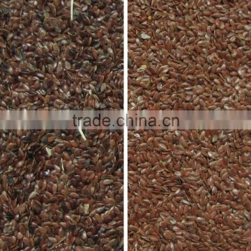 Seed color sorter with CE certification