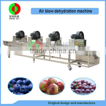 Hot selling industry air blow dehydration machine for vegetable and fruits,automatic air blow drying conveyor
