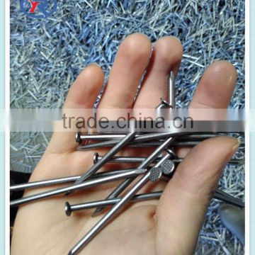 nail polish factory cheap common nails promotion nails in tianjin