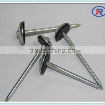 china Galvanized umbrella head roofing nails with smooth/twist shank
