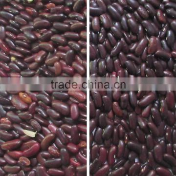 Excellent quality CCD bean color sorter