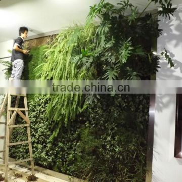 Wholasale fashion designs/high imitation artificial plant wall, accept customization for indoors and outdoors decoration