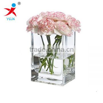 Transparent glass vase decorative vase