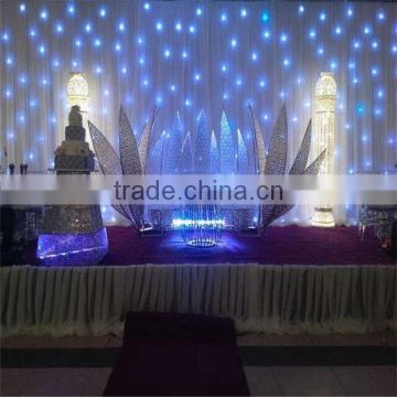 Super bright good quality led color changing curtain light for wedding and stage background