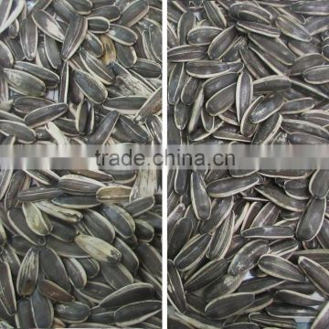 Mainly part imported sunflower seeds color sorter machine