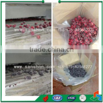 China Industrial Sweet Corn Quick Freezing IQF,Sweet Corn Quick Freezing Line,Vegetable IQF Line