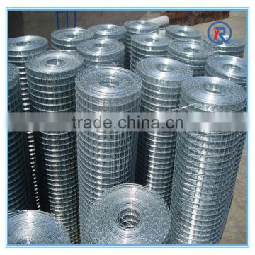 low price welded wire mesh/ galvanized welded wire mesh fence supplier