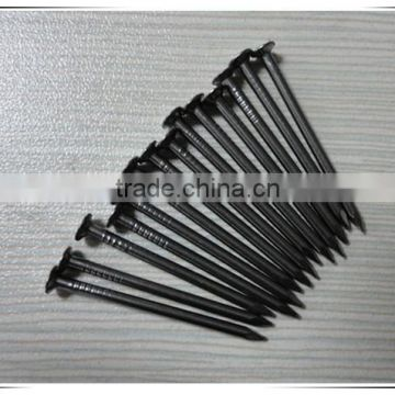 Professional factory 5 inch common iron nail metal nails from china supplier