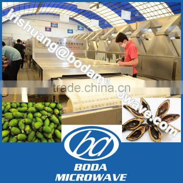 betel nut microwave tunnel dryer