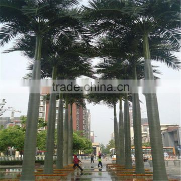 plastic fiber king coconut tree green park Artificial King Coconut Tree