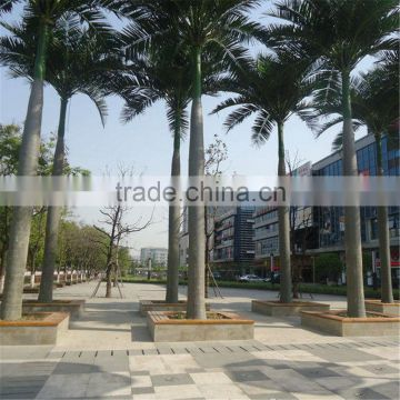 China wholesale royal palm tree ornamental artificial washingtonia robusta palm trees for sale
