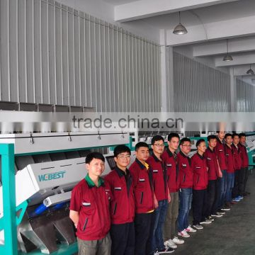 High Accuracy and Efficiency Melon seeds color sorter Intelligent multifunction