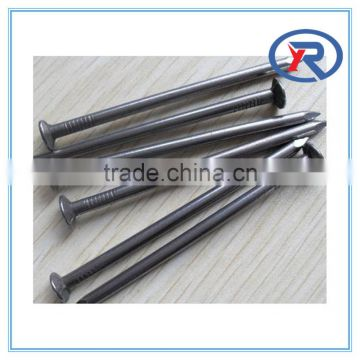 Hot Supply polish common nails/common iron nail/common wire nail with good quality