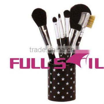 Cosmetic brush set with plastic case