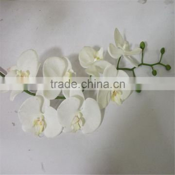 SJ20170048 China wholesale factory price silk dance orchid for indoor decoration cheap silk dance orchid