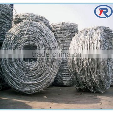 cheap price electric Galvanized fence wire barbed wire
