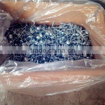 Galvanized roofing nail /colorful zinc coated roofing nails / corrugated roofing nails manufacturers in china