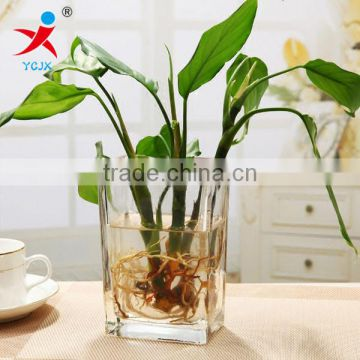 More transparent quadrate glass floret bottle hydroponic money plant flower implement aggravating the sitting room is contracted