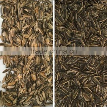 2016 Most Popular Sunflower Seeds CCD Camera Color Sorter
