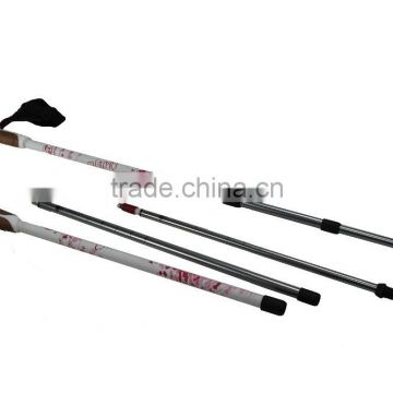 Nordic walking stick, cheap price, 3 sections, internal lock, 6061 Aluminum SZ17007