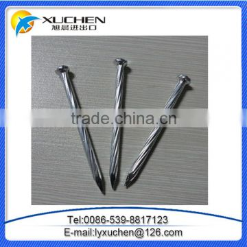 "3"" Galvanized concrete nails stainless steel nail with factory price"