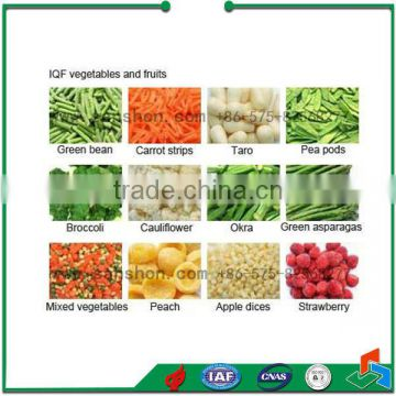 Advanced Vegetable and fruit food machinery quick freezer