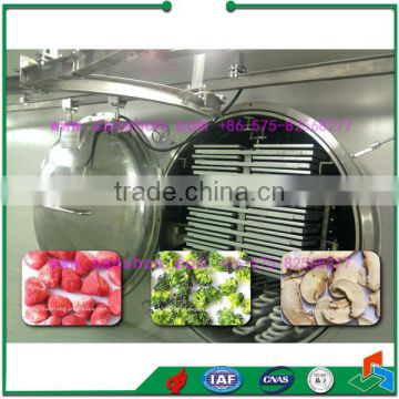 Advanced Sanshon fruit and vegetable Vacuum freeze dryer