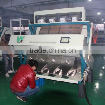 RGB camera ccd color sorter machine for Filbert sorting