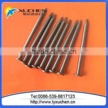 Common steel nails