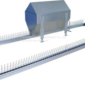 Automatic chicken chain feeding system