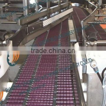bead surface conveyor system