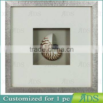 Chinese Nautilus Shells Graphic Art Shadow Box Gift Ideas Wall Decor