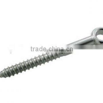 SS/stainless steel lag screw