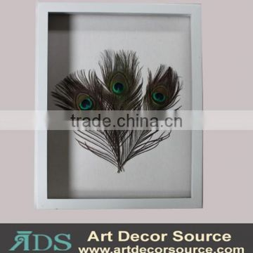 Shadow Box Wall Art with Feather