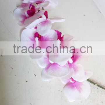 Decorative real touch Artificial orchid flower in factory price