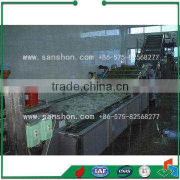 Advanced Fruit & Vegetable Industrial Washing Machine